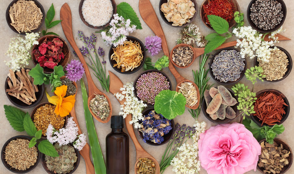 TIENS France sante bien etre ingredients naturels medecine chinoise traditionnelle